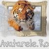 Avatare Cu Tigri