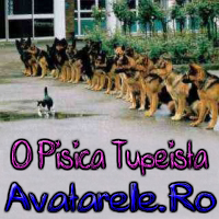 Catei Si Pisici