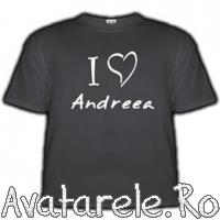 Te Iubesc Andreea